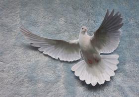 Novéna k Duchu svatému pro děti